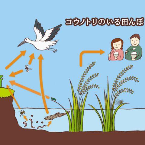 環境教育のイラスト